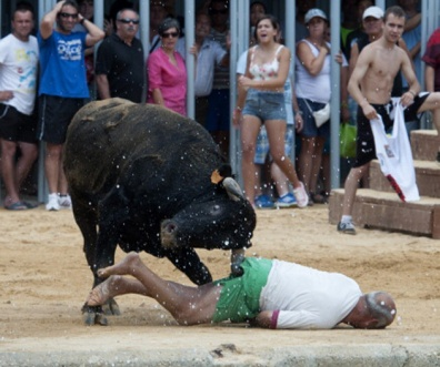 SPAIN-FESTIVAL-ANIMAL-BULL